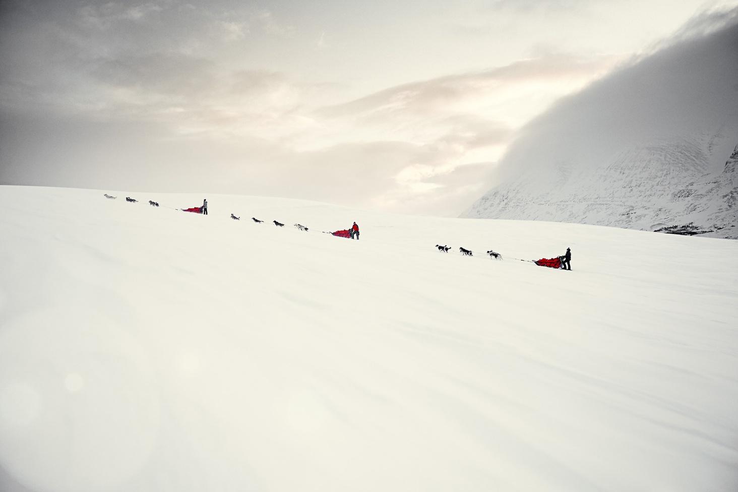 Lars Schneider Norwegen Hundeschlitten