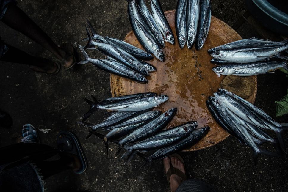 06_Sao-Tomé-Surf-2-15-JPG-261