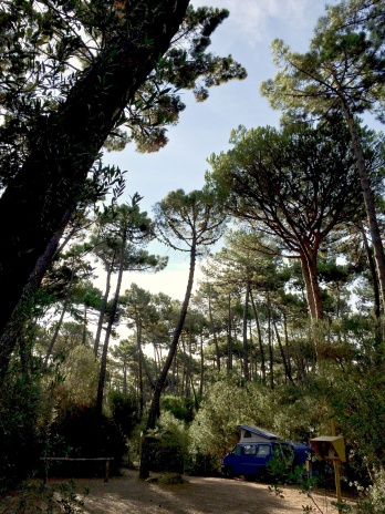 Camping_Punta_Ala_6