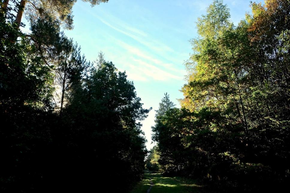 Outville Herbstwandern Perlacher Mugl 2