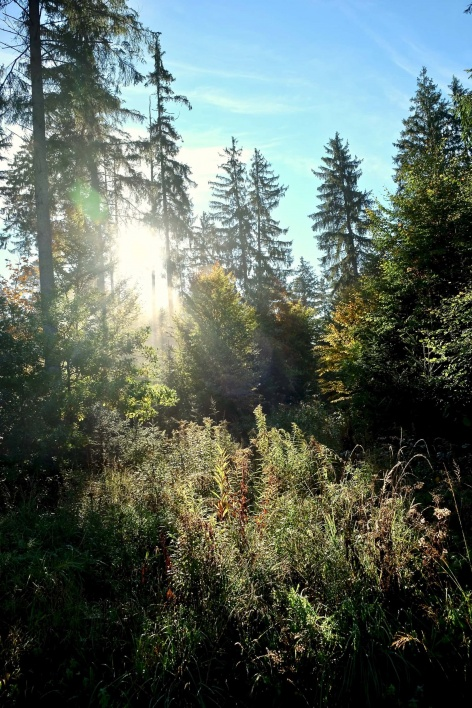 Outville Herbstwandern Perlacher Mugl 4