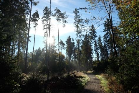 Outville Herbstwandern Perlacher Mugl 6