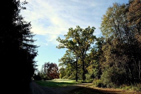 Outville Herbstwandern Perlacher Mugl 8