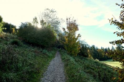 Outville Herbstwandern Perlacher Mugl 9
