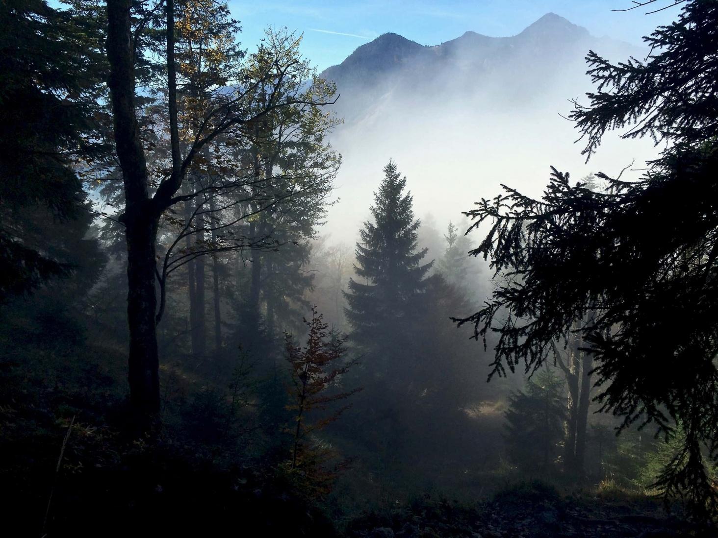 Wanderung_Jochberg_Walchensee_2
