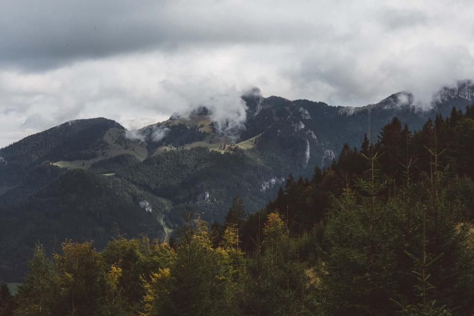 Wanderung_Laubenstein_mit_Kampenwandblick_3