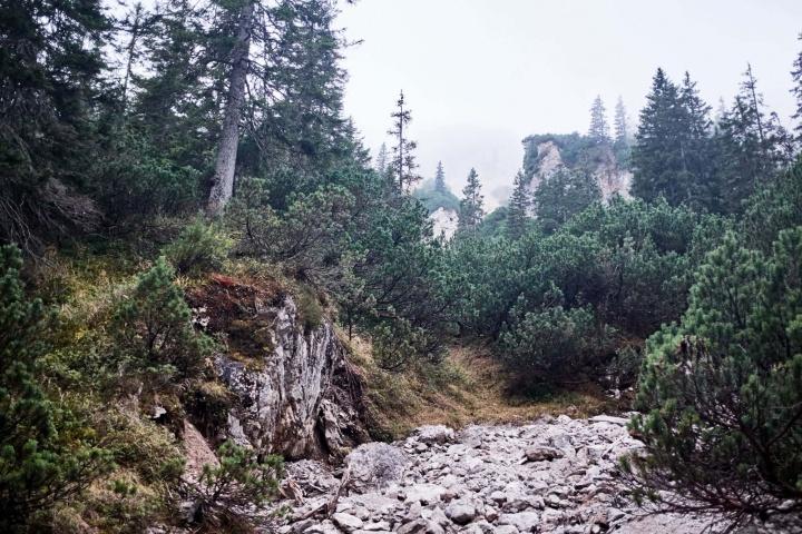 Ammergauer Alpen Berge Wandern Herbst 3