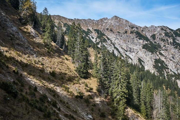Ammergauer Alpen Berge Wandern Herbst 5