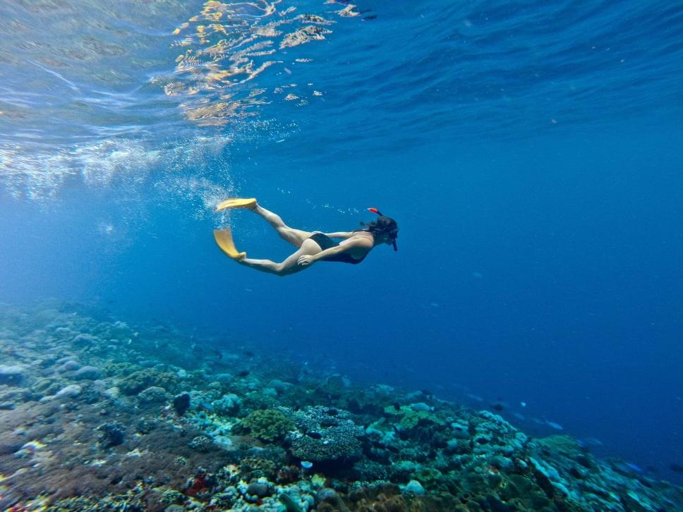 Surfen Indonesien 6