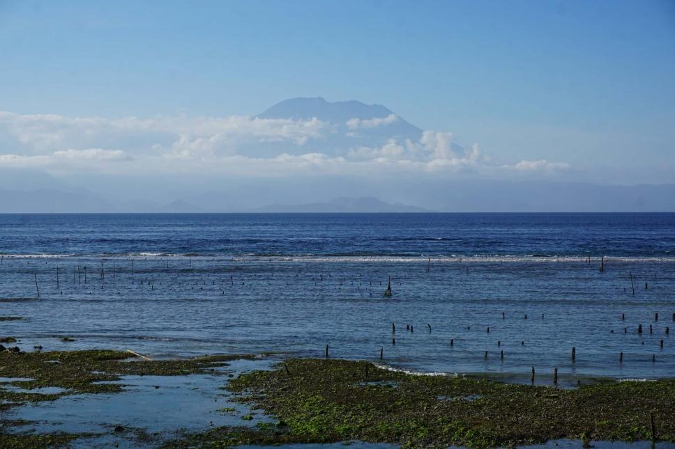 Surfen Indonesien 8