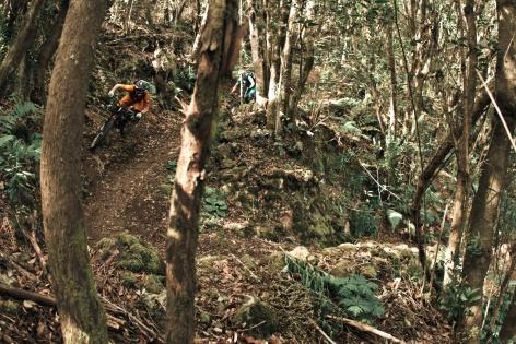 La Palma Mountainbike 13