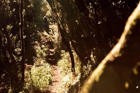 La Palma Mountainbike 21