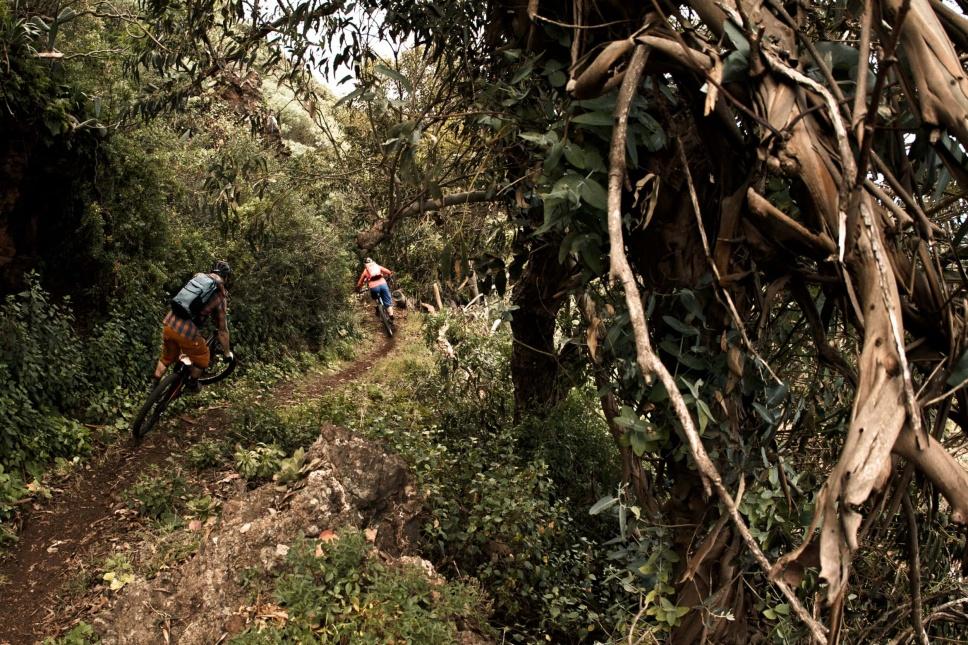 La Palma Mountainbike 3
