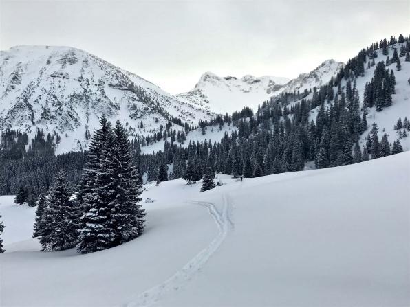 skitouren-spitzingsee-taubenstein-Taubenstein-7
