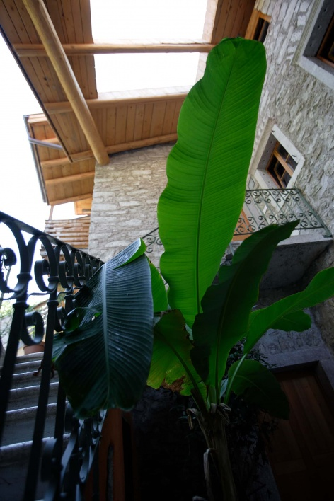 Outville Guesthouse Arco 6