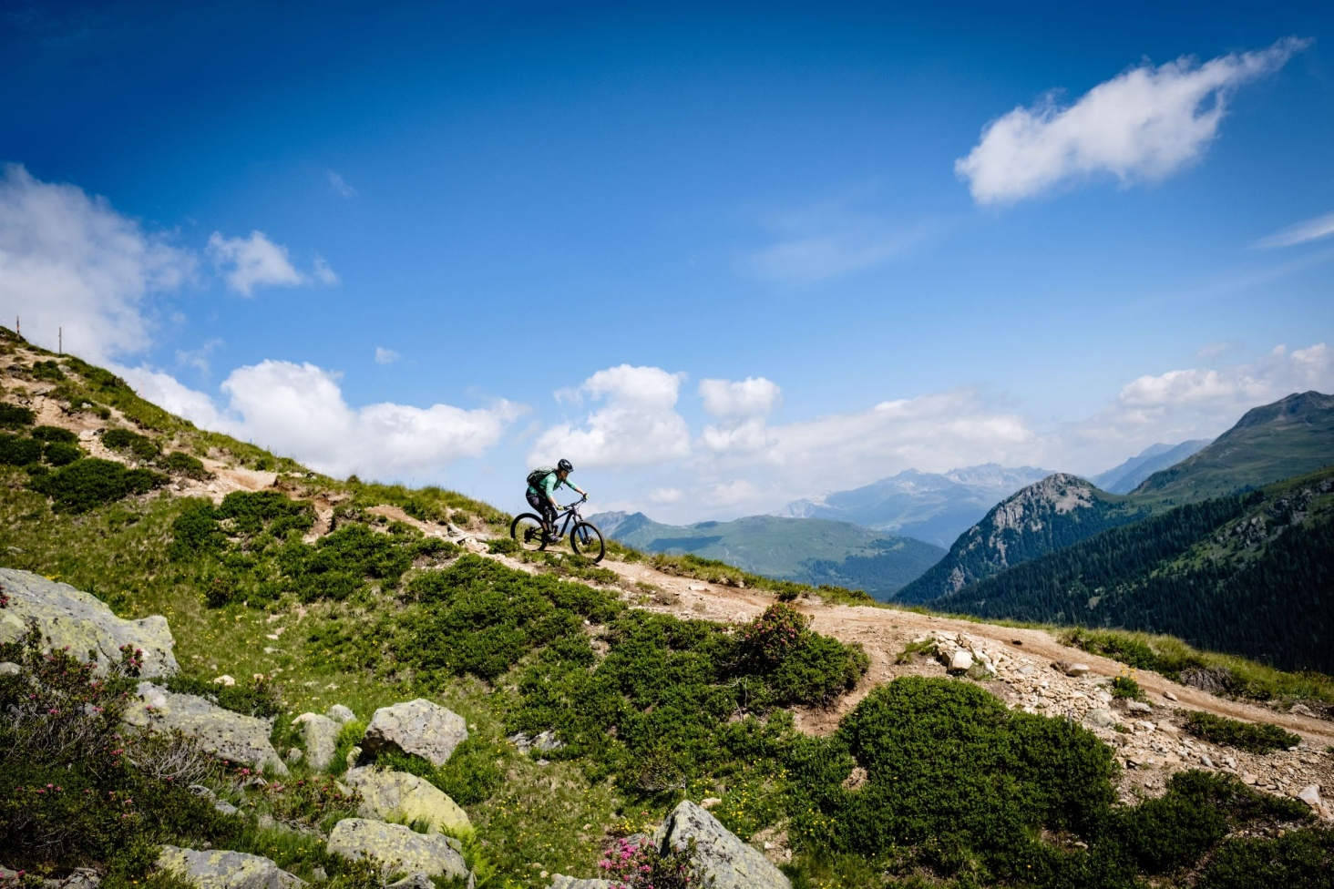 Trail Paradies Davos Outville 5